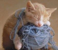 yarn sleep